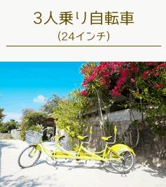 竹富島レンタサイクル二人乗り自転車